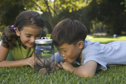 Science discovery for preschool - 75 free lesson plans.