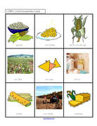 Corn products discussion and matching game - print 2 copies.